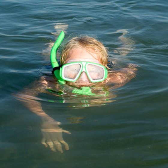 Even children can enjoy snorkeling (with parental supervision).