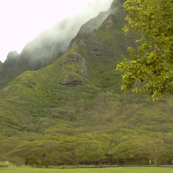 Kauai mountain hillside view.