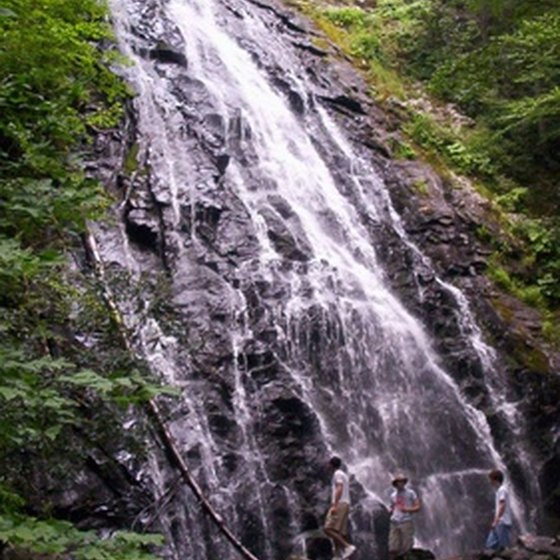 Hike to the waterfalls in Silver Falls State Park.