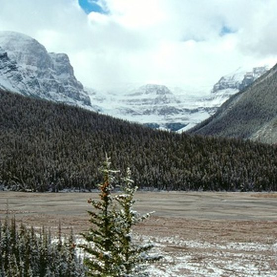 Rocky Mountain National Park welcomes thousands of campers each year.