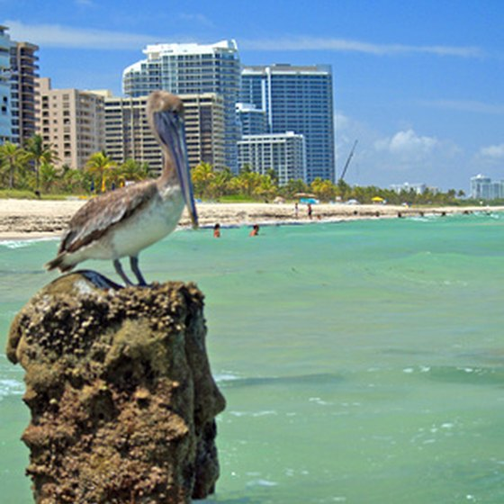 The lure of the ocean and availabilty of lodging keep attracting visitors to South Beach, Florida.