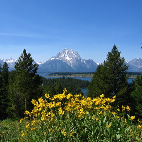 Grand Teton National Park is home to several natural attractions and recreational sites.