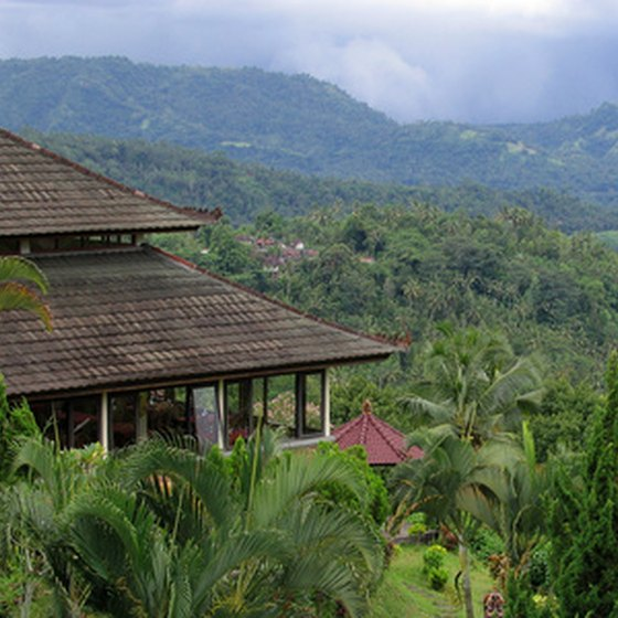 The view from a typical Bali villa.