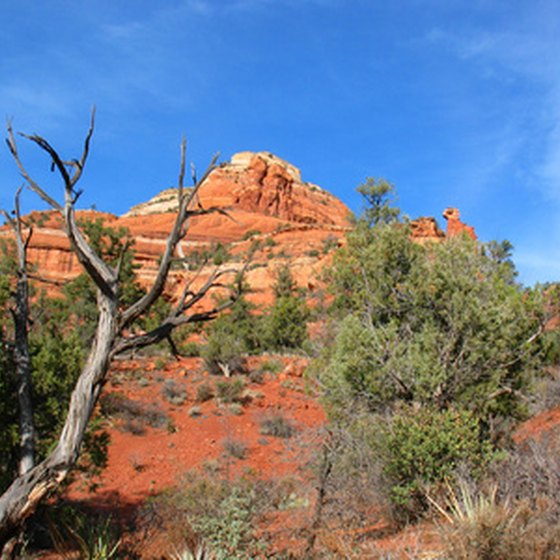 Sedona, Arizona's famous red rocks add to the desert's beauty.