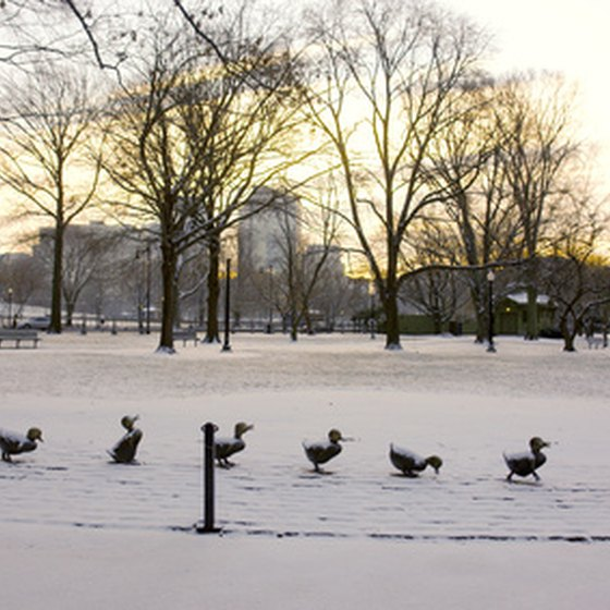 Even though it's cold in Boston in January, there are still many things to do.