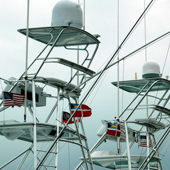 South Florida fishing charters offer year-round fishing.