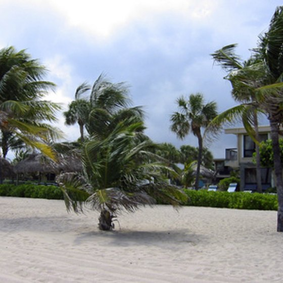 Florida Gulf Coast resorts are steps away from white-sand beaches.