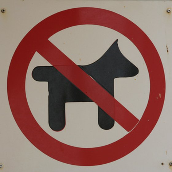 Many Phoenix hotel do not allow pets.