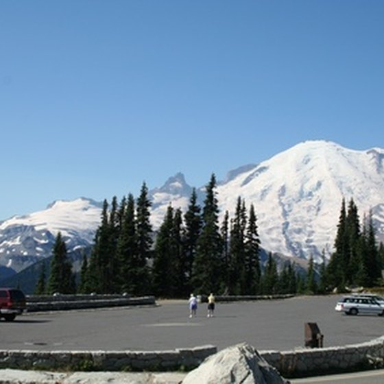 Tourists at Mt. Rainier in Washington