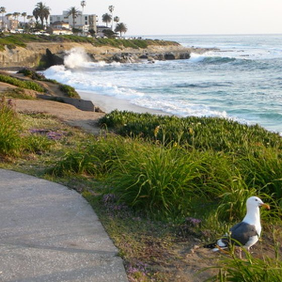 The beach at La Jolla is one of several San Diego beaches that are fun for the whole family.