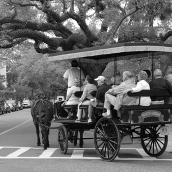 Vactioners can take a horse-drawn carriage ride through Charleston.