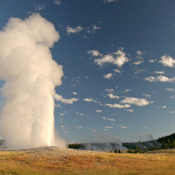 KOA 's Yellowstone lodging is about 30 minutes' drive from Old Faithful.