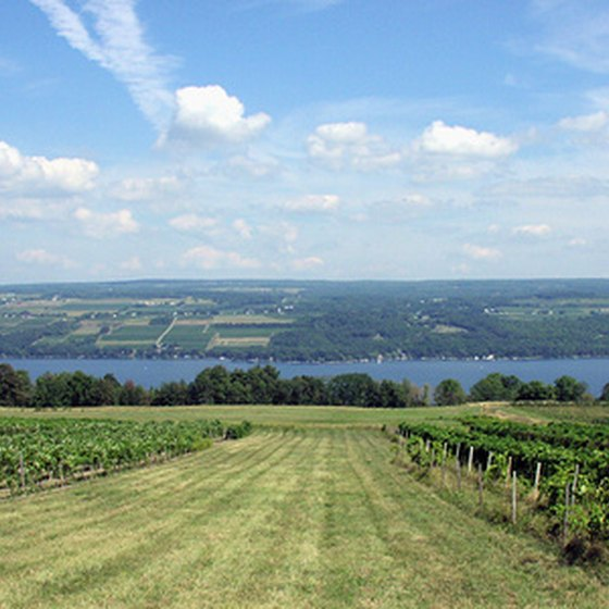 The Finger Lakes wine region offers waterfront views.