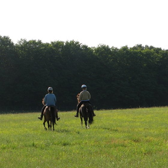 Get away from it all on a horseback riding vacation.