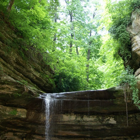 View waterfalls at Starved Rock State Park in the spring.