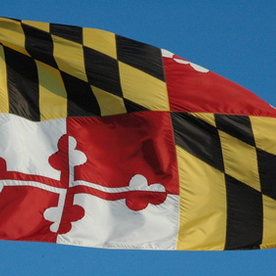 Maryland's state flag