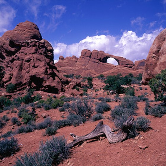There are more than 2,000 rock arches in Arches National Park.