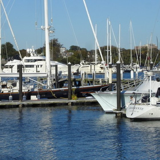 The marina in Newport