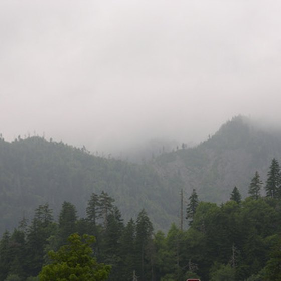 Views of Great Smoky Mountains National Park can be seen from cabins near the park.
