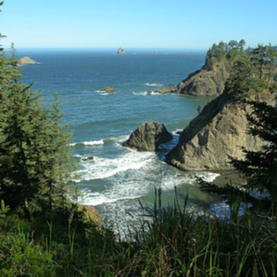 The Oregon Coast Scenic Railroad takes riders along Highway 101.