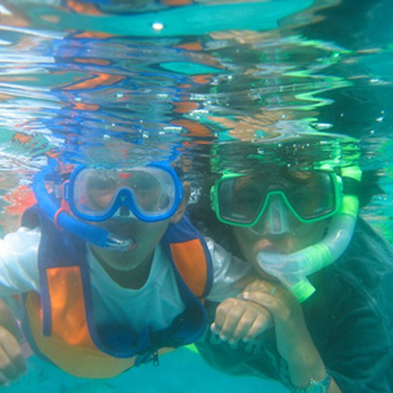 Go snorkeling on a family vacation in Aruba.
