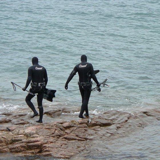Places like Marco Island are known for their spearfishing.