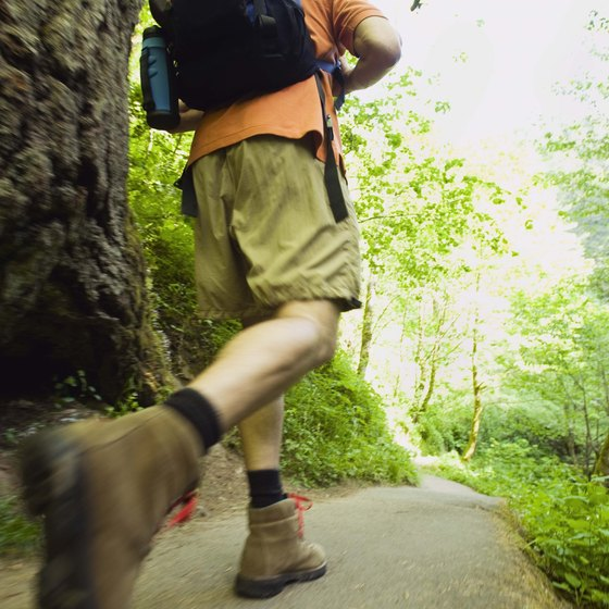 Portland has parks packed with hiking trails for teens looking for an adventure in nature.