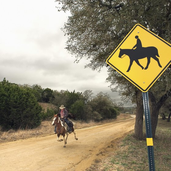 Learn to ride a horse at a ranch in Burleson, Texas.