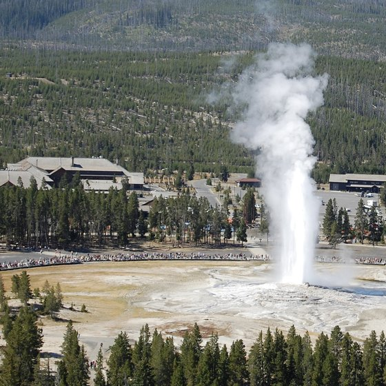 Old Faithful at Yellowstone National Park has that wow factor that kids love.