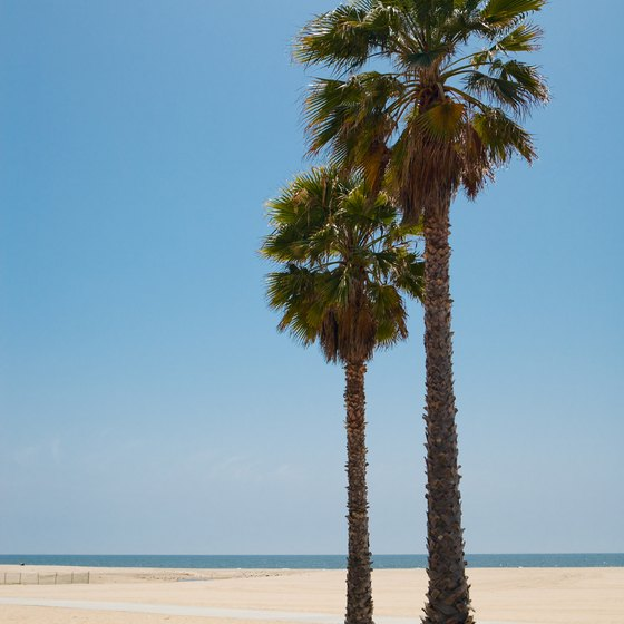 Visitors can enjoy California's Venice Beach in the spring.