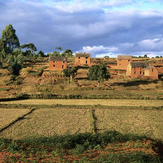 The rural villages of Madagascar reveal agricultural traditions.