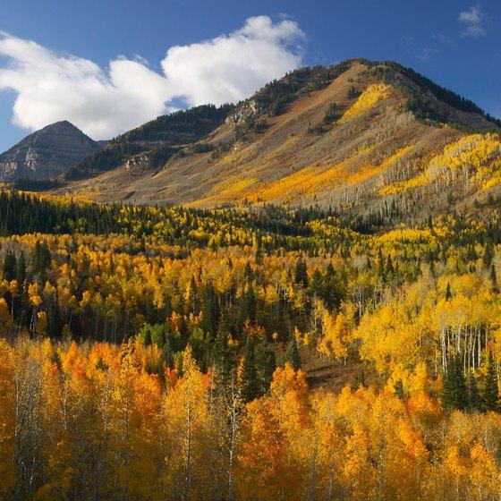Atv Trails In Fillmore Utah Usa Today