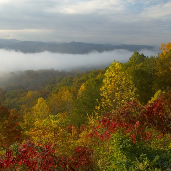 The Smoky Mountains offer some unforgettable views.