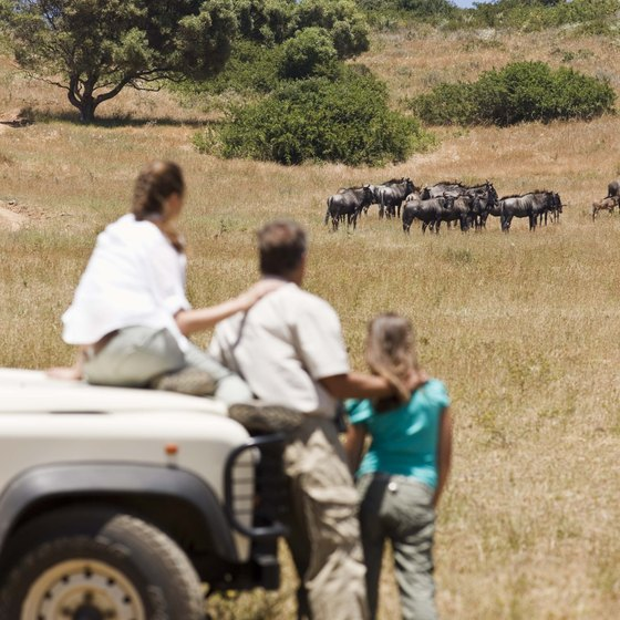Travelers to Africa may need to get inoculations and immunizations prior to their trip.
