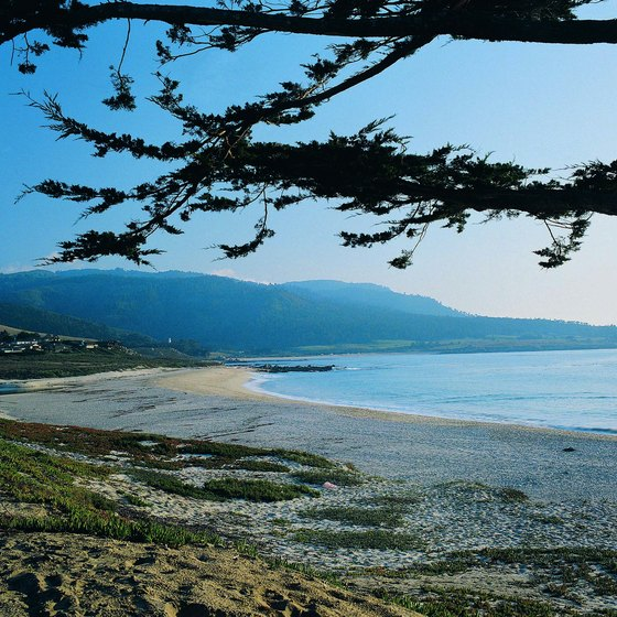 Carmel Beach is a short distance from the romantic hotels in Carmel.