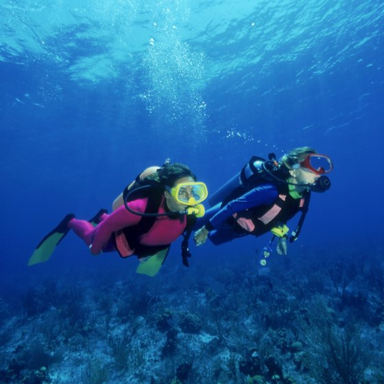 Runaway Bay, Jamaica offers diving options for both amateur and experienced divers.