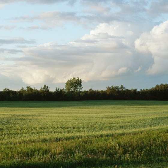 Manitoba is known for its prairie land.