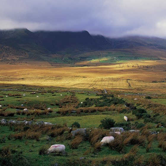 Ireland's landscapes range from rugged shoreline to agricultural tracts to rolling hills.