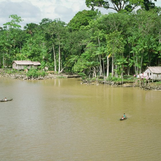The floodplain of the Amazon River is inundated seasonally.