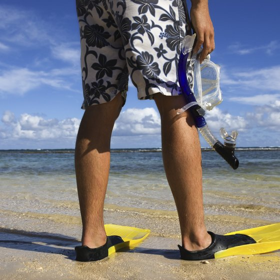 Snorkel fins help you guide yourself through the water.