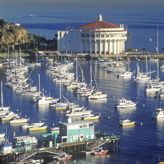 Southern California cruises offer tours of Catalina Island.