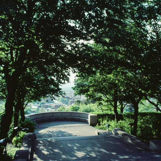Mount Royal offers a scenic outdoor escape in the heart of Montreal.