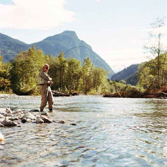 Fly fishing is a popular way to catch trout.