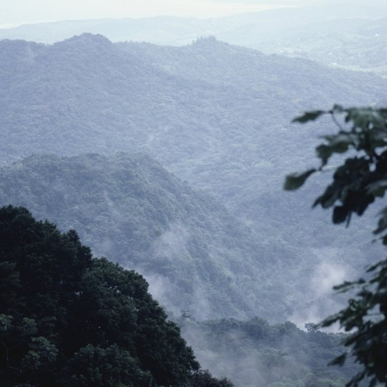 Puerto Rico's El Yunque mountain is part of El Yunque National Forest.