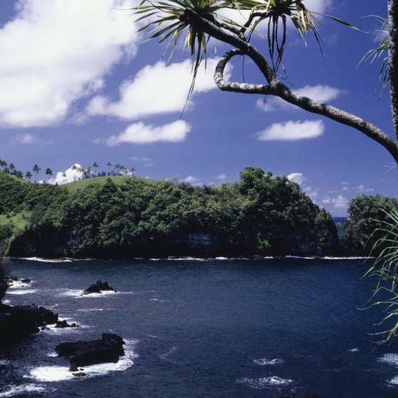 The Hamakua coast is home to a few locally known beaches.