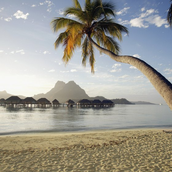 Bora Bora is known throughout the world for its pristine beaches.