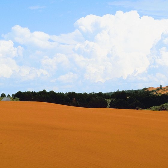 Ride through orange sand at Coral Sand Dunes State Park.