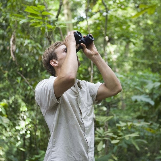 Photography provides ecotourists with a low-impact way to enjoy nature.