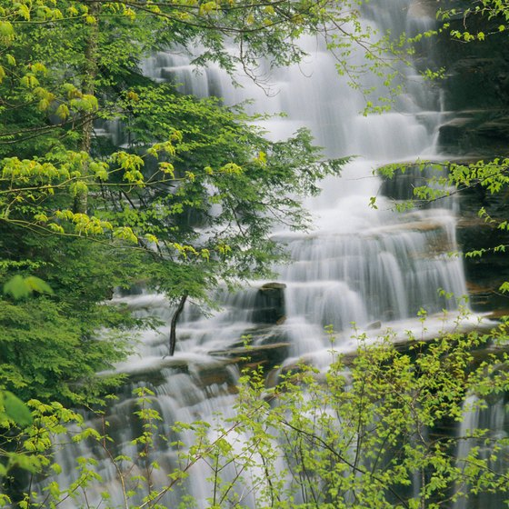 Ricketts Glen State Park is known for its wild waterfalls.