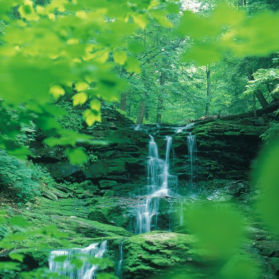 Pennsylvania waterfalls are found primarily in the state's eastern and western regions.